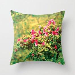 Azalea blooming Throw Pillow