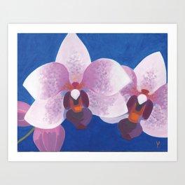 Orchide Art Print