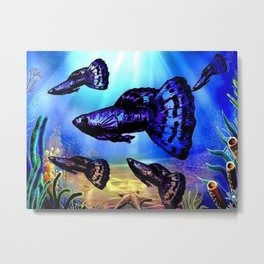 Blue & Purple Dragon Fancy Guppy Metal Print
