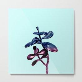 Galaxy Succulent Plant Metal Print