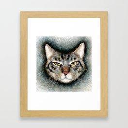 Cat #1 (Xavier) Framed Art Print