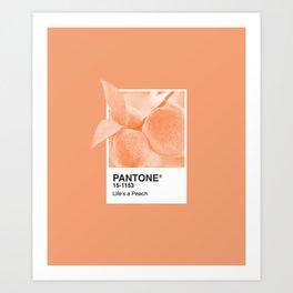 Pantone Series – Peach #2 Kunstdrucke