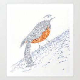 bird IX Art Print