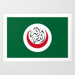 Flag of the Organisation of Islamic Cooperation Art Print