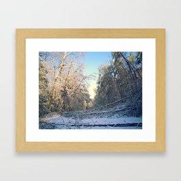 Fallen trees Framed Art Print