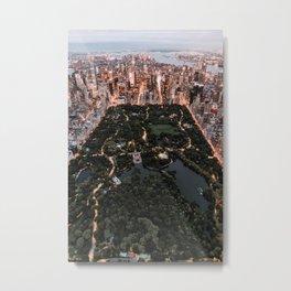New York City Skyline and Central Park Metal Print