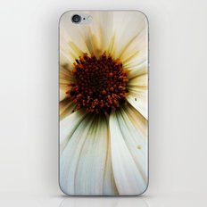 Gaïa (with a little ant) iPhone & iPod Skin