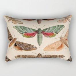 Vintage Natural History Moths Rectangular Pillow