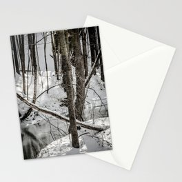 Winter Woods & Creek Stationery Cards
