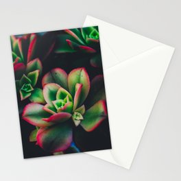 The Succulent Garden 3 Stationery Cards