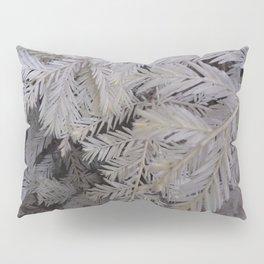 Albino redwood tree Pillow Sham