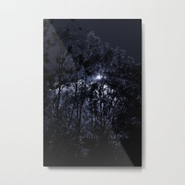 Trees In The Night Light Metal Print