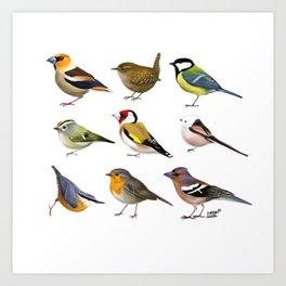 Year of the Bird I. (Europe) Art Print