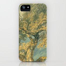 "J.M.W. Turner ""A Great Tree"" iPhone Case"