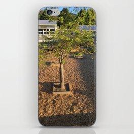 Playground Tree iPhone Skin