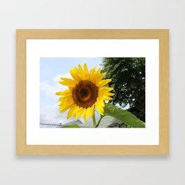 une seule fleur Framed Art Print