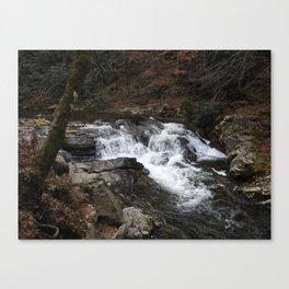 Laurel Creek Waterfall Canvas Print