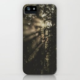 Sunset in the Woods - Nature Photography iPhone Case