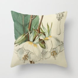 Edwards' Botanical Register Throw Pillow