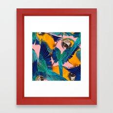 Ara Parrot Framed Art Print
