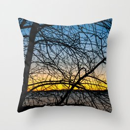 Cold and Clear Throw Pillow