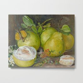 Pomelo, Henna Branch, Pear and Flying lizard still life painting Metal Print