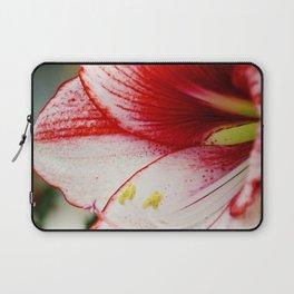 Red Amaryllis Laptop Sleeve