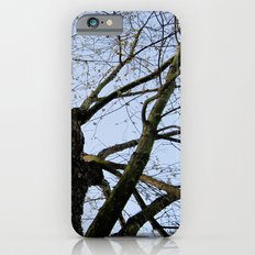 Youth Upon My Limbs I iPhone 6s Slim Case