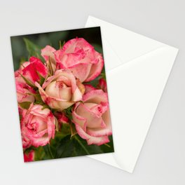 Miniture Roses Stationery Cards