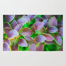 Vibrant green and purple leaves Rug