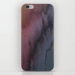 Steel Mango iPhone Skin