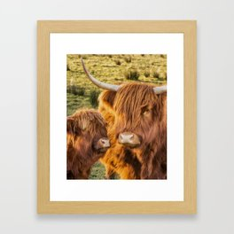 Mother and child. Highland Cows of Scotland....(heilan coo's) Framed Art Print