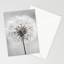 Delicate Dandelion Flower in soft light Stationery Cards