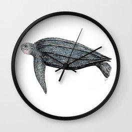 Leatherback turtle (Dermochelys coriacea) Wall Clock