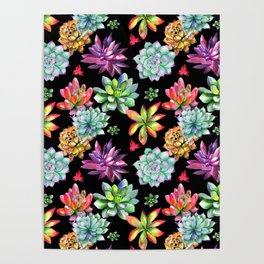 Colorful Succulents Poster