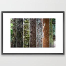 Mix arboreo Framed Art Print
