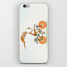 Orange iPhone & iPod Skin