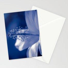 Enchanting Moments - Pua Aloalo - Koki'o Ke'oke'o - Hibiscus Arnottianus - Hawaiian White Hibiscus Stationery Cards
