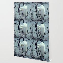Great Egret in Water A108 Wallpaper