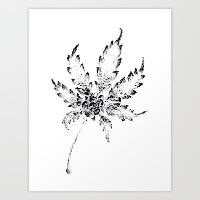 Black white cannabis resin leaf art print