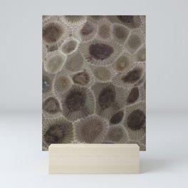Petoskey Stone Mini Art Print