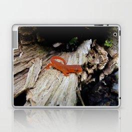 Red Newt Laptop & iPad Skin