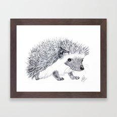Hedgehog! Framed Art Print