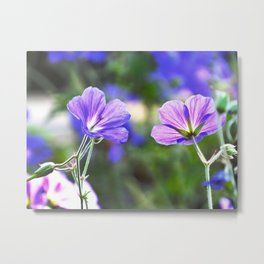 Two Faces Of Purple Metal Print