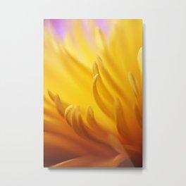 Flaming Petals Metal Print