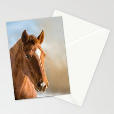 Brown Horse Winter Sky Stationery Cards