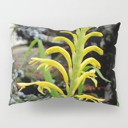 It's Only Natural Pillow Sham
