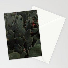 Nopal Stationery Cards
