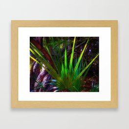Sunlight comes to the forest. Framed Art Print