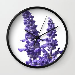 blue sage flour in bloom in spring Wall Clock